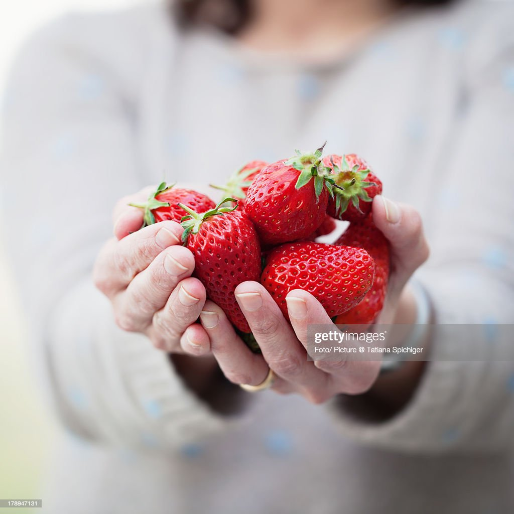 Strawberries in my hands : Stock Photo