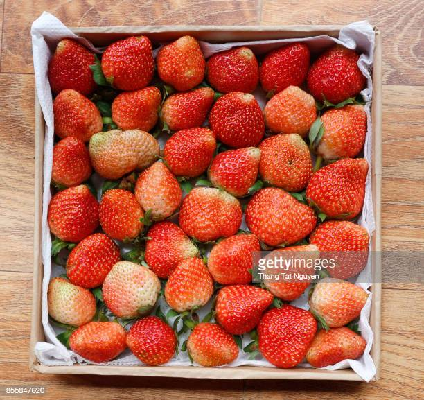 Strawberries pack in paper box
