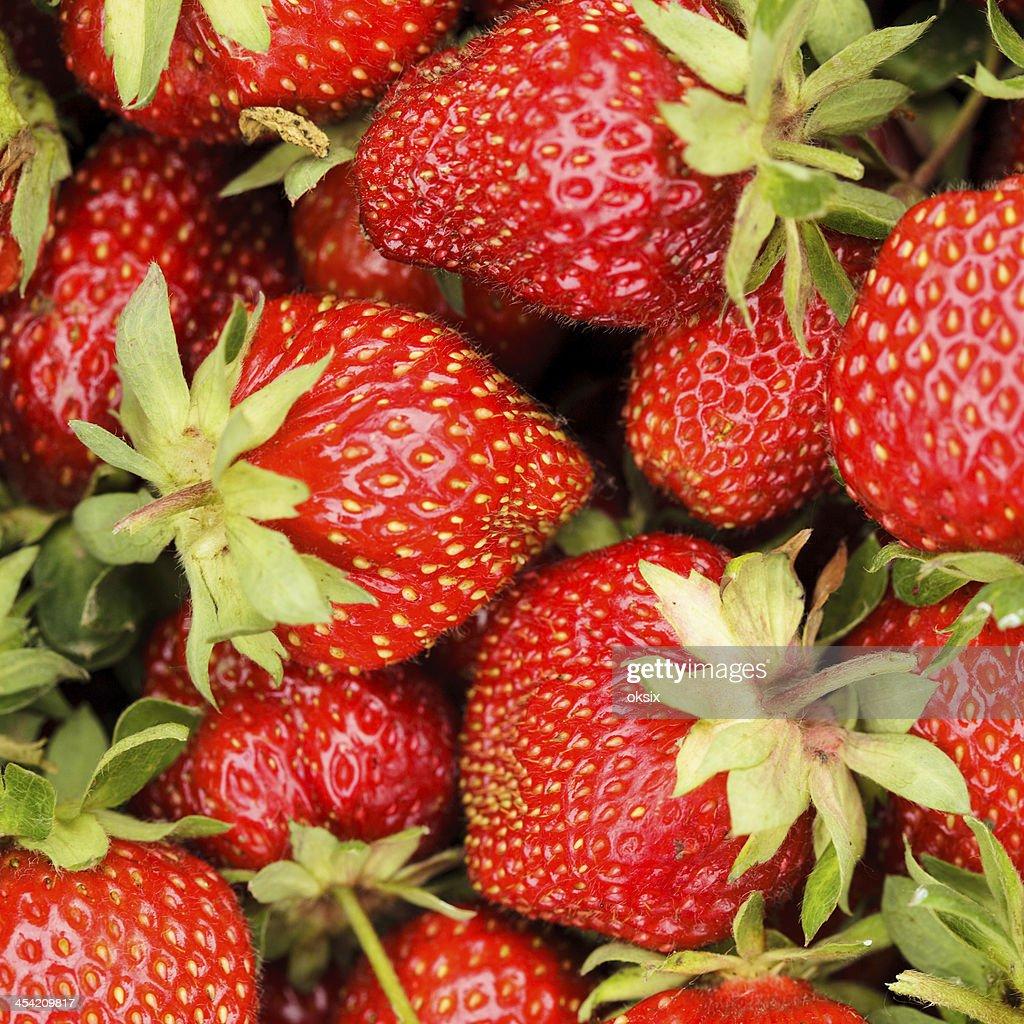 Strawberry berries : Stock Photo