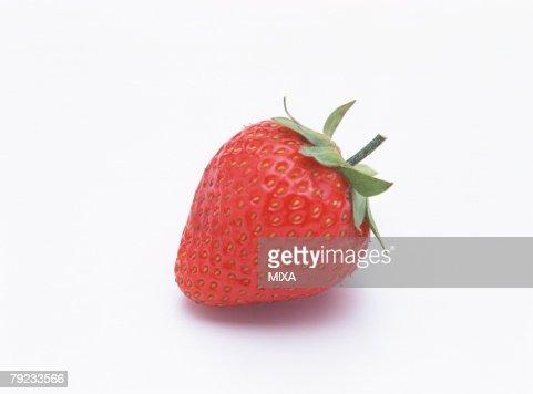 Strawberry : Stock Photo