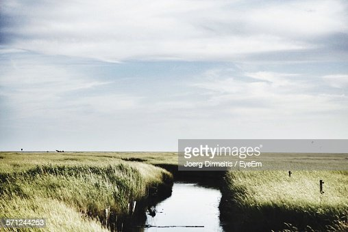 Stream Amidst Grassy Field Against Sky