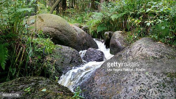 Stream Flowing Through Rocks In Forest