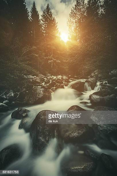 Stream in a forest at sunset