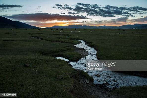 A stream runs through the grasslands of a Tibetan nomadic family's camp on July 27 2015 on the Tibetan Plateau in Yushu County Qinghai China Tibetan...