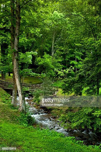 Stream with wooden bridge Buck House on Bald Mountain Burnsville NC