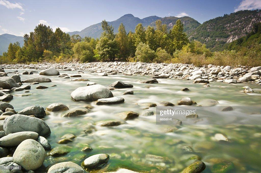 streambed in wilderness landscape