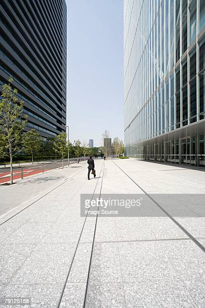 Street and office buildings