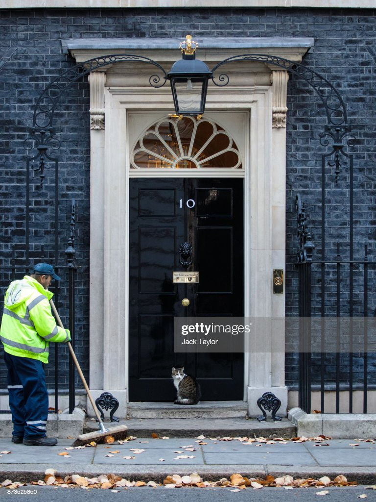 A street cleaner sweeps leaves as Larry the Downing Street cat sits outside Number 10 on November 13, 2017 in London, England. British Prime Minister Theresa May is to hold a meeting with European business leaders today over their concerns about the future of UK-EU trade arrangements after Brexit.