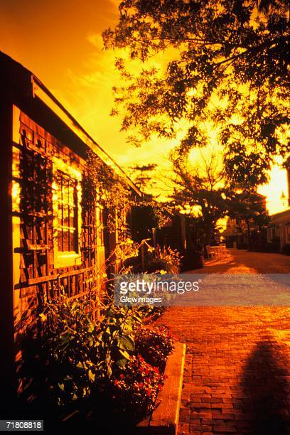 Street in front of a house, Cape Cod, Massachusetts, USA