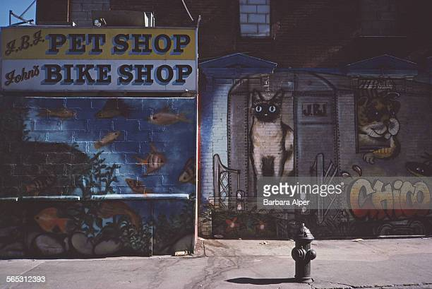 A street mural by Antonio 'Chico' Garcia on the Lower East Side New York City USA March 1985