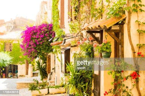Provenzale strada di città piena di fiori (Provenza-Alpi-Costa Azzurra, Francia)