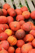 Street sale of red pumpkins besides the highway, in autumn. Upper Bavaria, near Laufen, Germany, Europe.
