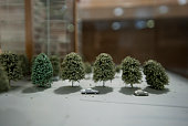 Street scape model of trees and cars