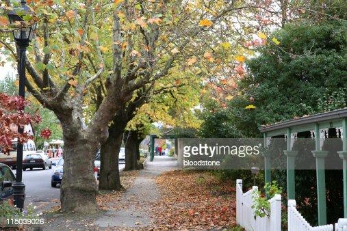 秋のストリートシーン