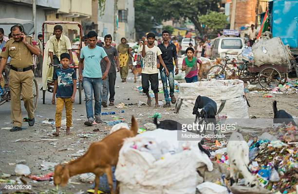 Street Scene with inhabitants of a slum and goats on October 05 2015 in NewDelhi India