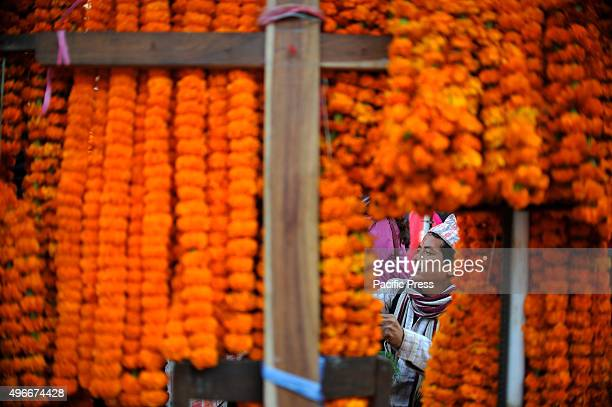 ASON KATHMANDU NEPAL KATHMANDU NEPAL A street vendor holds and waits for a costumer as he was selling marigold flower garlands on the occasion of...