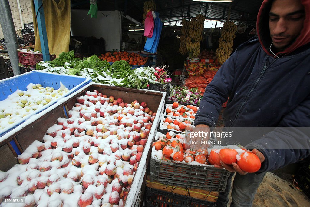A street vendor holds holds tomatoes covered in snow as he waits for customers on the side of the road in the West Bank town of Hebron on January 9, 2013. Extreme weather, including torrential rains and heavy winds, killed four people in Israel and the Palestinian territories on January 8, as widespread flooding swept the Middle East. AFP PHOTO / HAZEM BADER