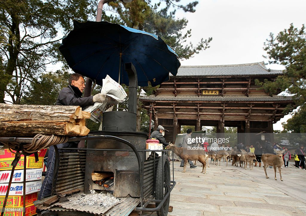 A street vendor reads a newspaper as Japanese deer wait for meals on the entrance road of the Todaiji Temple on March 2, 2013 in Nara, Japan. The Japanese deer which roam freely in the grounds of the Todaiji Temple were believed to be messengers of the gods and have now been designated as a National Treasures. The Buddhist Todaiji Temple was built in 752 AD and is now one of seven sites in Nara to be listed as a UNESCO World Heritage Site.