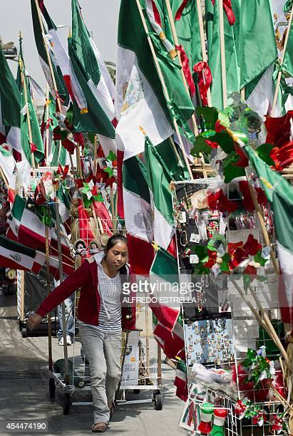 A street vendor sells Mexican flags and other souvenirs along Juarez Avenue in Mexico City on September 1 2014 ahead of the country's 204th...