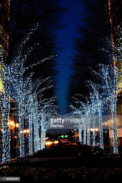 Street にクリスマスデコレーション