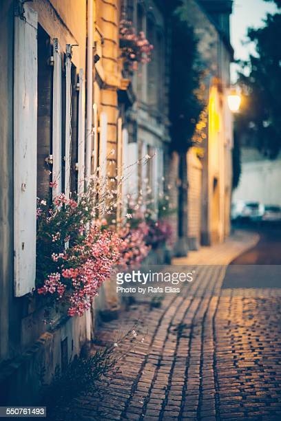 Street with flowers in facades