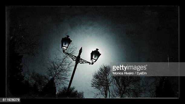 Streetlamp in the night in the light of the Moon