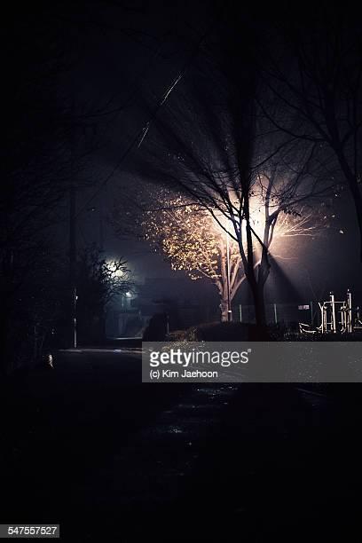 Streetlight flare