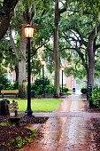 Streetlight in rainy urban park