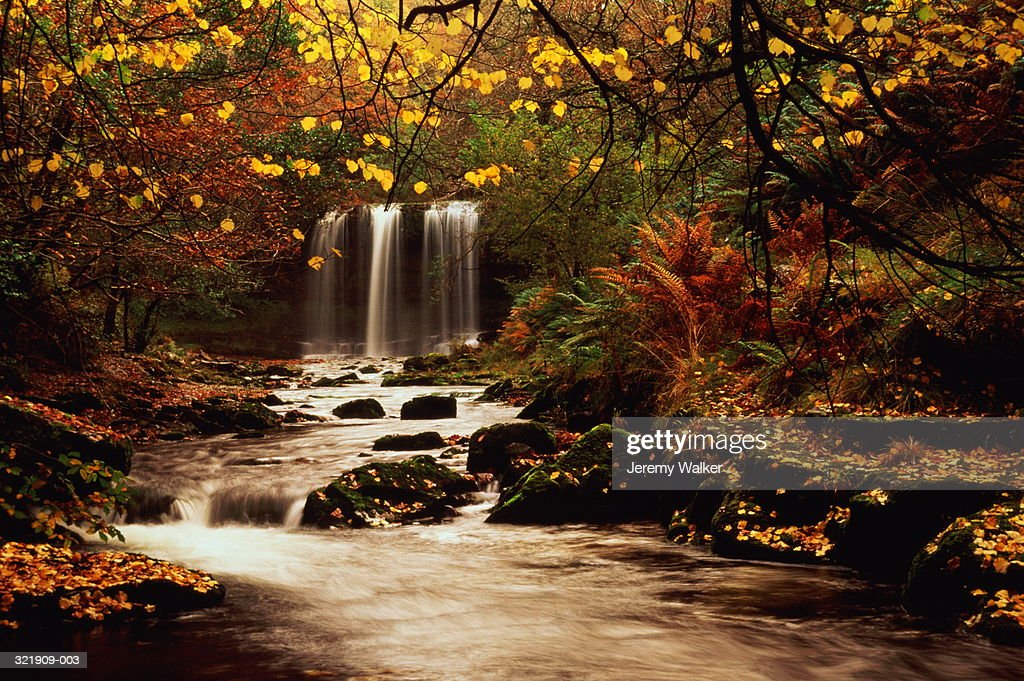 Stretch of river with waterfall in autumn woodland : Stock Photo