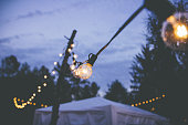 globe bulb string lights hanging at an outdoor event at dusk