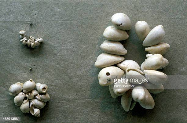Strings of Cowrie shells Through the ages these have been widely used as a form of currency