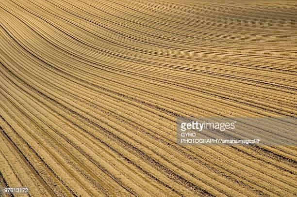 Striped field, Tokachi, Hokkaido, Japan