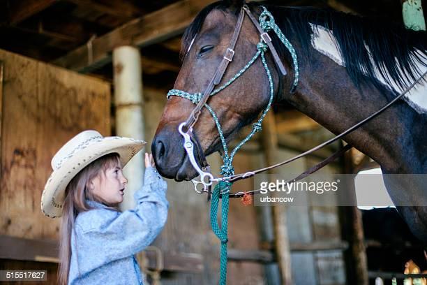Acariciar um cavalo