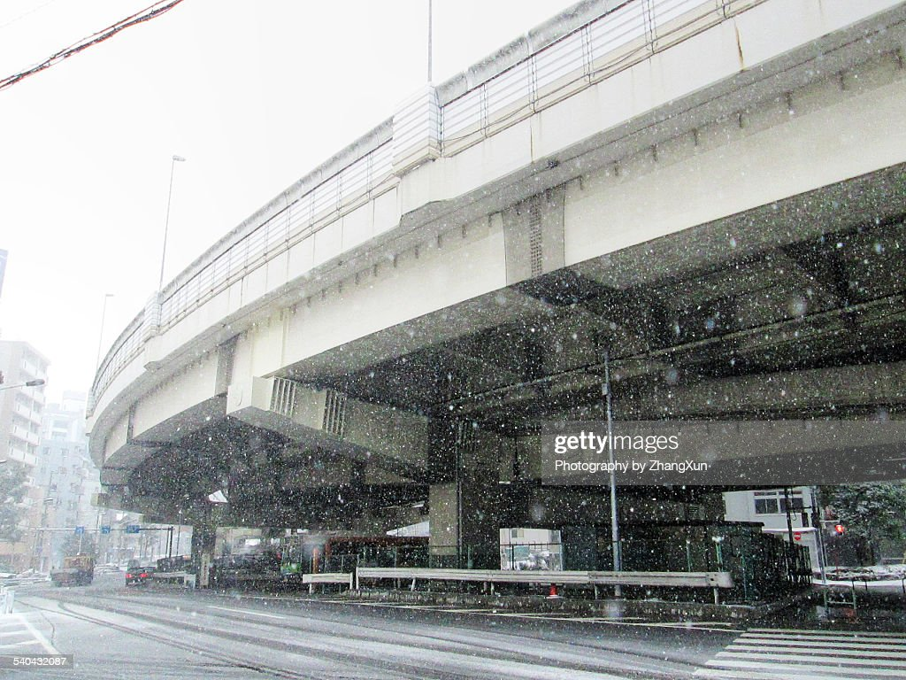 Strong falling snow in Tokyo, Japan