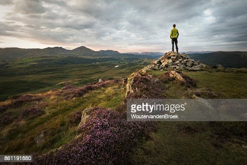 Strong hiker overlooking the beautiful mountains of the lake district at sunset with sunlight lit purple heathland : Stock Photo