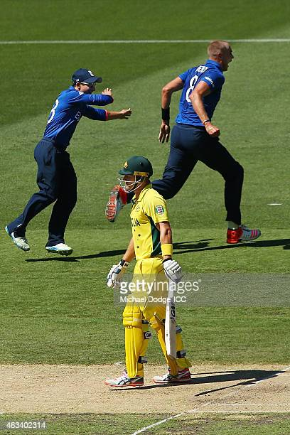 Stuart Broad of England celebrates the dismissal of Shane Watson of Australia during the 2015 ICC Cricket World Cup match between England and...