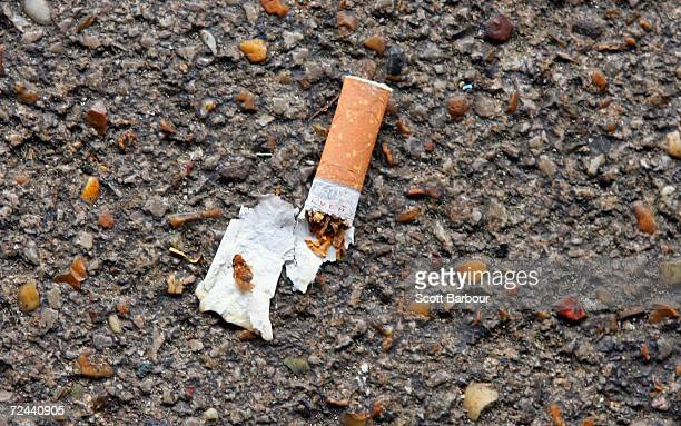 A stubbed out cigarette is seen on the footpath on November 16 2004 in London England Under plans released by the British Government smoking could be...