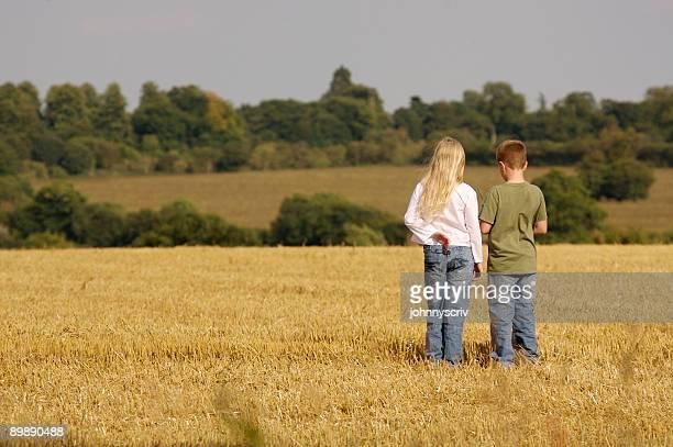 Stubble field...