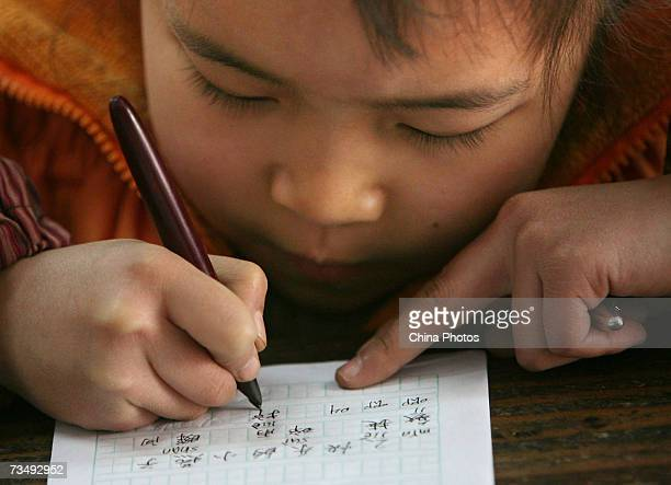 A student does homework at the Jielong Primary School on March 5 2007 in Chongqing Municipality China Chinese Premier Wen Jiabao said that the...