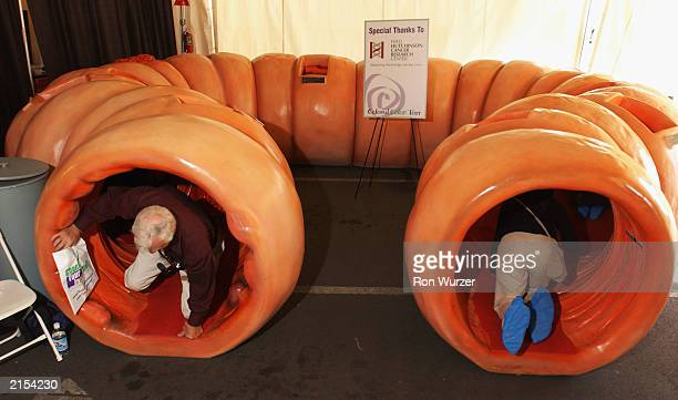 Students from Eton Technical College a medical school in Tacoma WA crawl through a 40foot long 4foot high replica of a human colon in Seattle on July...