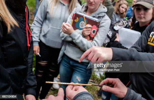 Students from Lake City High School visit Farragut State Park in Idaho measure the core of a tree to learn about the effect that trees have on the...