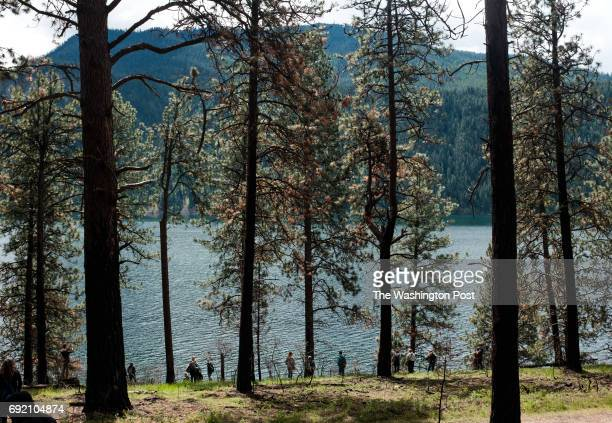Students from Lake City High School visit Farragut State Park in Idaho to learn about the effects that trees have on the environment just north of...