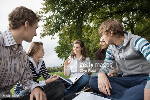 Students having study group on grass : Foto de stock
