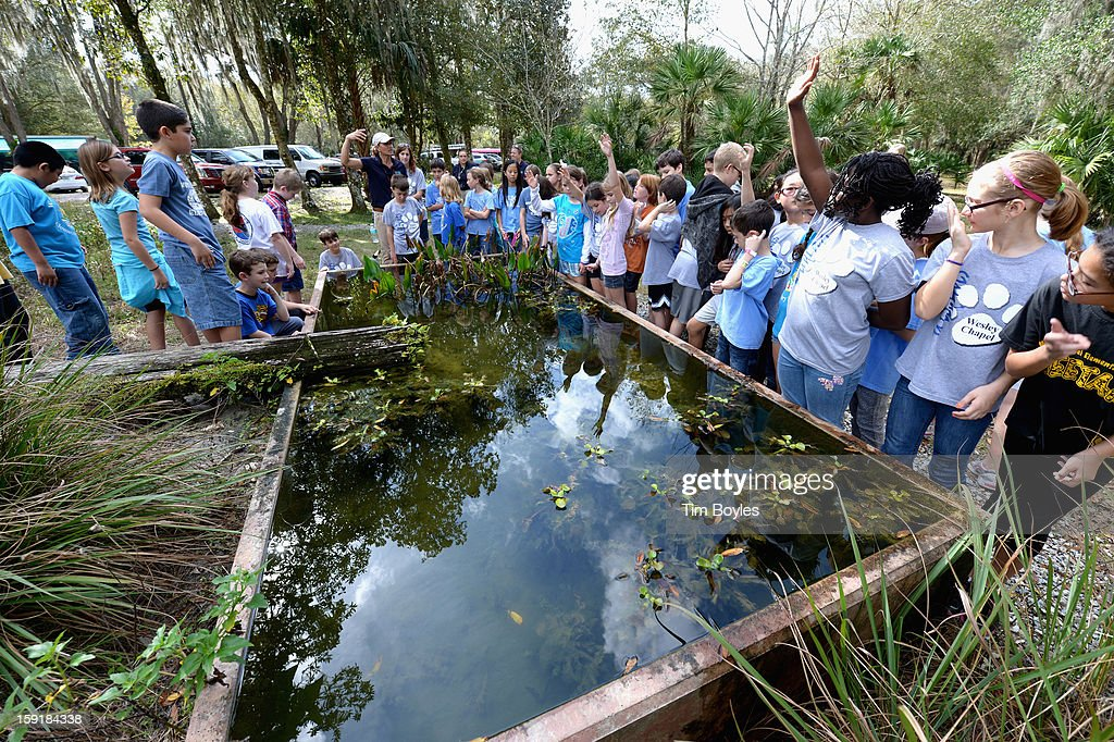 Students learn about water and the environment during the unveiling of WaterVentures, Florida's Learning Lab at Crystal Springs Preserve in partnership with Zephyrhills Brand 100% Natural Spring Water on January 9, 2013 in Crystal Springs, Florida.
