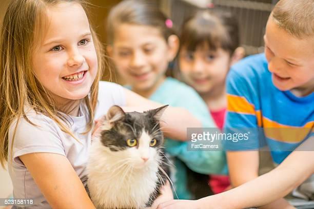 Students Volunteering at the Animal Shelter