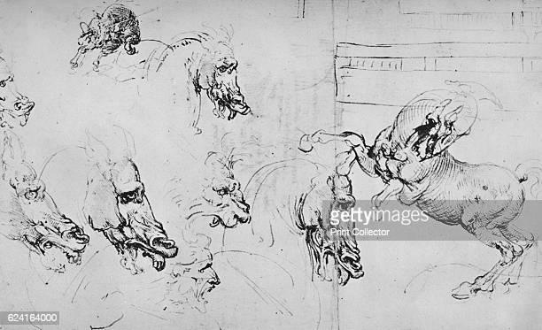 Studies of Horses' Heads and of a Rearing Horse' c1480 From The Drawings of Leonardo da Vinci [Reynal Hitchcock New York 1945] Artist Leonardo da...