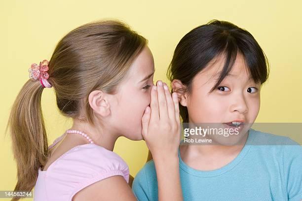 Studio portrait of teenage (16-17) girls gossiping