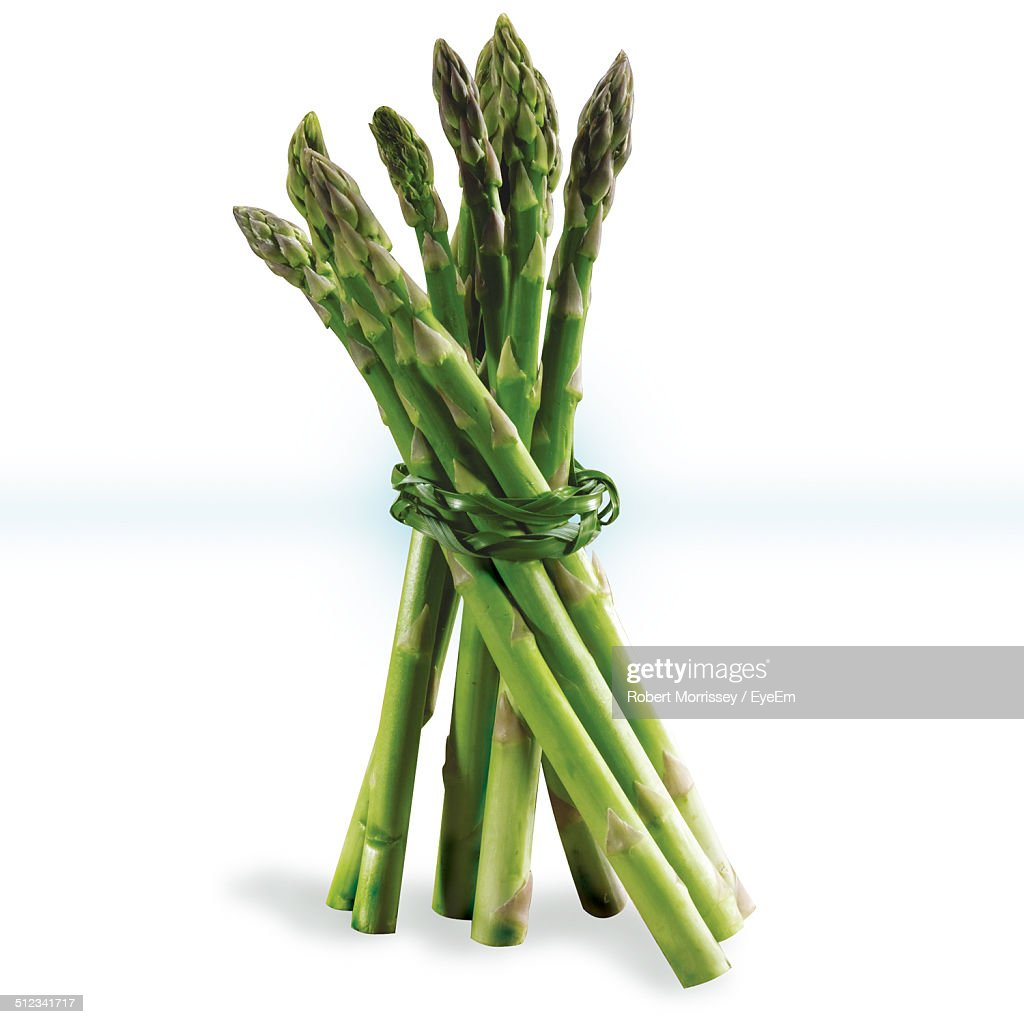 Studio shot of asparagus