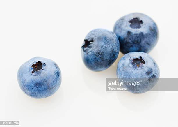 Studio shot of blueberries