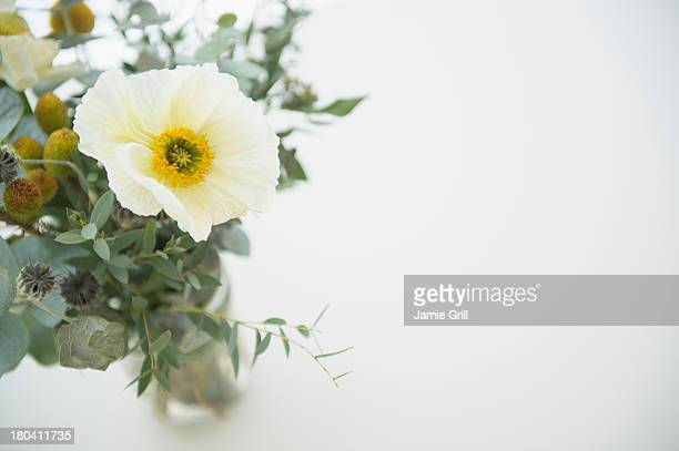 Studio Shot of bouquet on white background